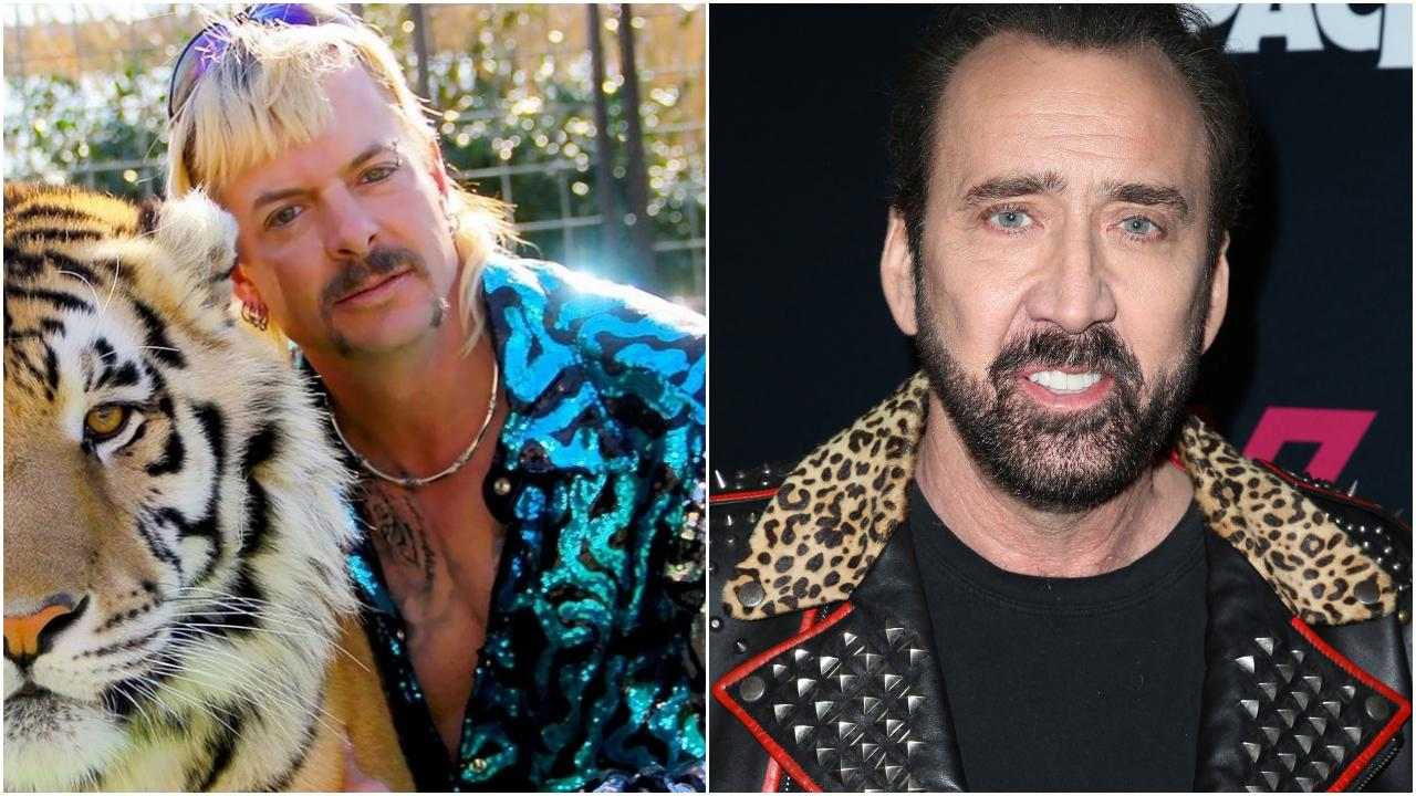 Nicolas Cage Joe Exotic